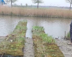 1 Oosthuizen- Aqua- Flora Floatlands en matten