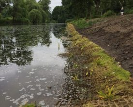 1 Groningen Engelsepark Aqua-Flora matten