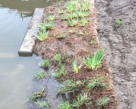 2 Den Haag Baaklaan - Aqua-Flora matten