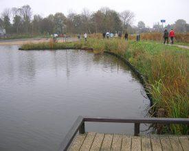 Schagen De Wiel Aqua-Flora matten 2008