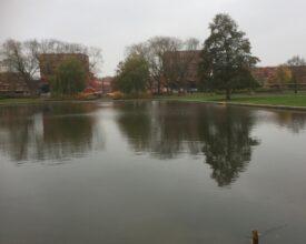 1 Groningen Oosterpark